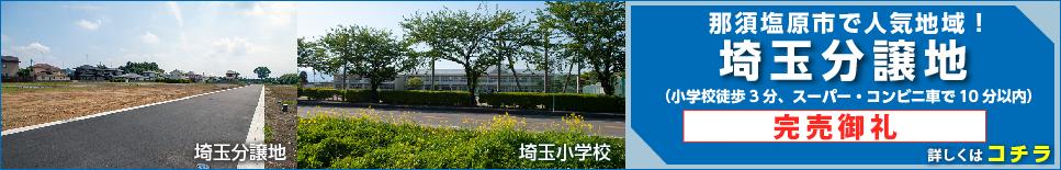 埼玉分譲地
